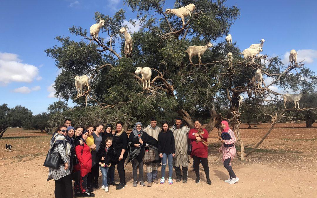 Le Voyage féerique à Marrakech du Pôle Famille de Nouvel Horizon